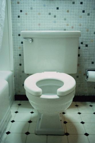 Домашние туалеты